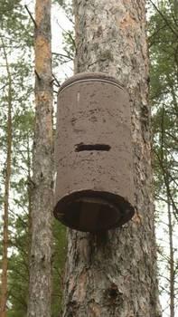 Trocinobetonowa skrzynka dla nietoperzy; trwała i odporna na niszczenie przez dzięcioły, fot. Maria Chybowska