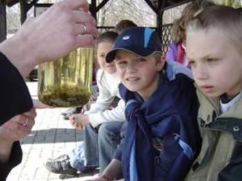 Podziwiamy żabi skrzek