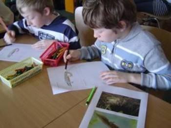 Dzieci malują płazy
