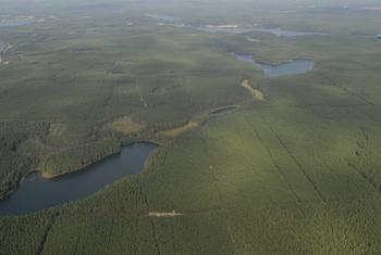 Jeziora: Wielkie i Małe Krzywce, Fot. Wiesław Stępień