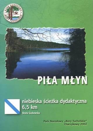 Piła Młyn, 2002