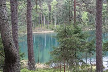Jezioro lobeliowe Kocioł, Fot. Beata Grabowska