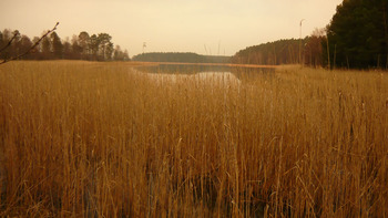 Jezioro Ostrowite, Fot. Maria Chybowska