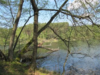 Jezioro Płęsno, Fot. Beata Grabowska