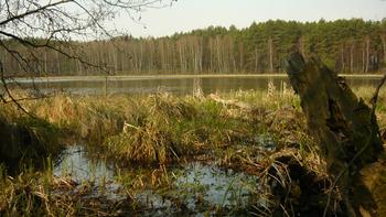 Jezioro Skrzynka, Fot. Maria Chybowska