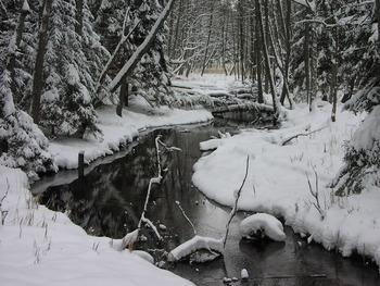 Struga Siedmiu Jezior zimą, Fot. Krzysztof Bosek