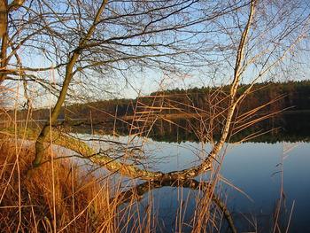 Jezioro Zielone E. Tokarska