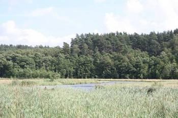 Jezioro Mielnica fot. B. Grabowska