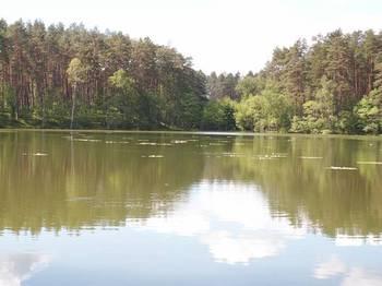 Jezioro Olbrachta fot. W. Błoniarz