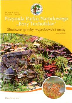 Śluzowce, grzyby, wątrobowce i mchy.