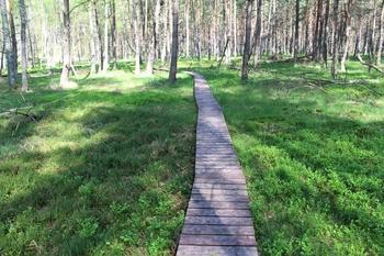 Zakończenie remontu ścieżki spacerowej