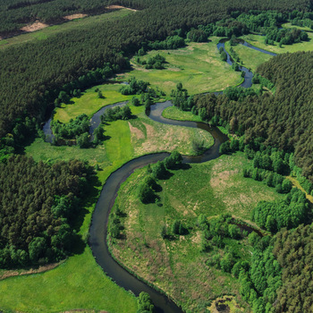 Tucholski Park Krajobrazowy Przyroda Krajobraz Kultura