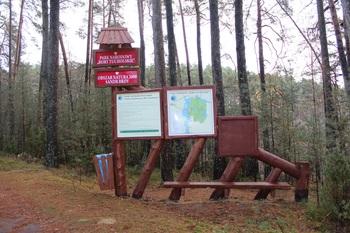 Zniszczenie tablicy w Parku