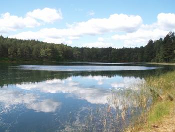 Jezioro Głuche fot. W. Błoniarz