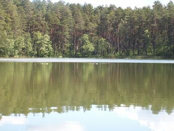 Jezioro Olbrachta fot. W.Błoniarz