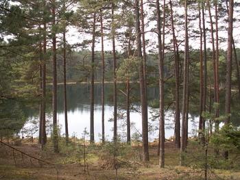 Jezioro Kocioł fot. W. Błoniarz