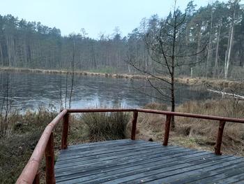 Platforma widokowa przy jeziorze Kacze Oko fot. B. Grabowska