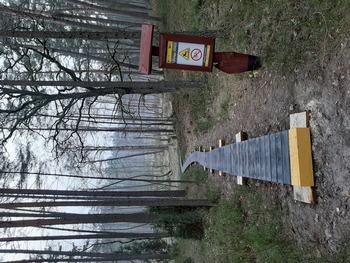 Drewniana kładka przy jeziorze Kacze Oko fot. B. Grabowska